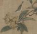 林椿枇杷山鸟图 (1)